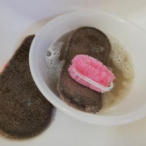 《ブラシ、スポンジ…掃除道具の掃除は、家じゅうキレイの近道【日刊住まい】》