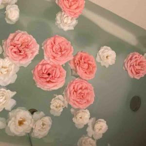 《【おうち時間】家にあるアイテム追加でバラ風呂を思う存分楽しむ!アイスバーグの香りに誘われて》