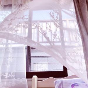 《【湿気カビ対策】部屋の換気タイミングと空気清浄機のホコリ取り》