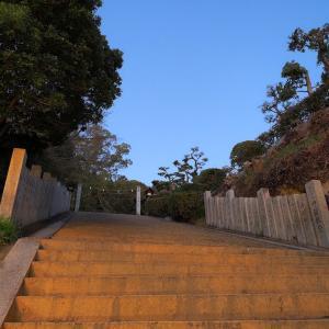 早朝の松山城