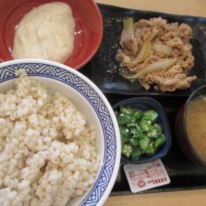 吉野家で麦とろ御膳、しゃぶ葉でしゃぶしゃぶとすいか食べました