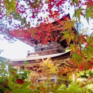 「信州の鎌倉」大法寺 見返りの塔