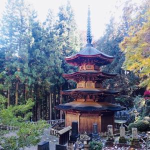 「信州の鎌倉」安楽寺八角三重塔