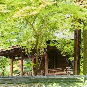 国宝 神谷神社本殿
