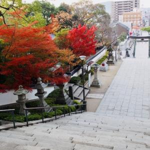 防府天満宮&玉祖神社