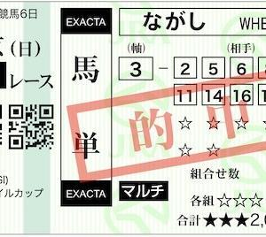 2020 NHKマイルC 万券7th (187th)