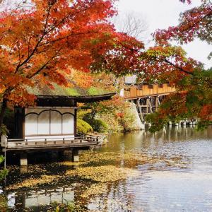 和歌山城 西之丸庭園の紅葉
