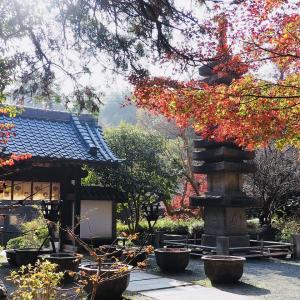 鎌倉 円覚寺・覚園寺の紅葉