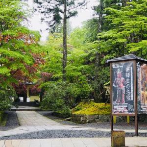 高野山で Unkei31 complete