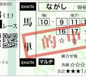 2019 稲妻S 万券14th (172th)