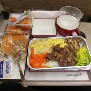 今までで一番美味しかった機内食