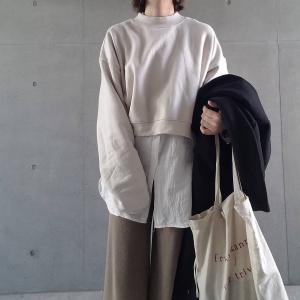 韓国服が入った最近の服装たち