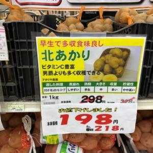 種イモを購入