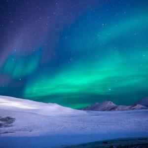 12月14日・南極の日…(#5769)