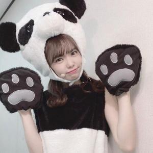 10月28日・パンダの日…(#6221)