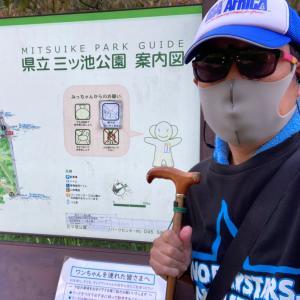9月27日・bobby散歩(ボビさんぽ)…(#6463)