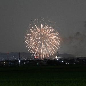 京都の『…はじまりの花火』をネット探す