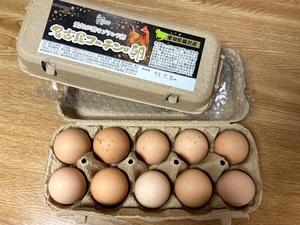 父の日の 名古屋コーチンの卵 と「ハゲ」三連発