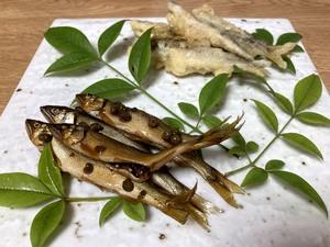 梅雨も吹っ飛ぶ初夏の味…小鮎の天ぷらとあっさり甘露煮作りました