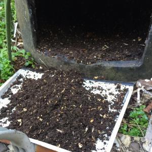 外設置コンポストのミミズ糞収穫と保存の仕方