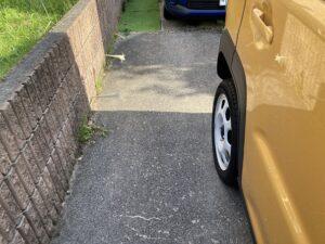 駐車場の端に「根性」百合?