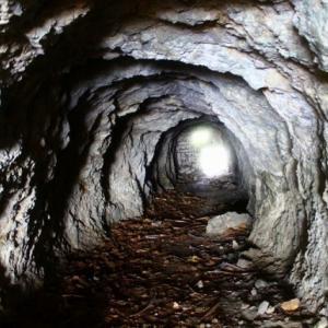 自宅の地下洞窟(床下)の探検してますか?【室内に蟻が侵入した事件簿】その2