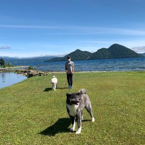 洞爺湖…そしてまた洞爺湖…。