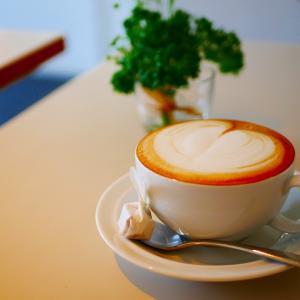 【吉祥寺】公園を望む雰囲気の良いカフェで過ごす癒され時間「MARGARET HOWELL」