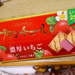 久しぶりのチョコレート菓子