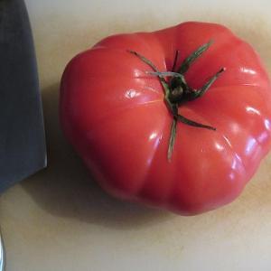 ジャイアントトマト