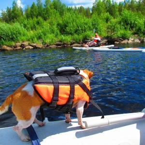 パドルボートとゴムボート
