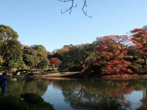 紅葉の六義園と旧古河庭園 Autumn foliage in Rikugien and Kyu-Furukawa garden