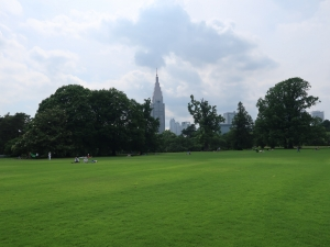 開園された新宿御苑に行ってきました。I have visited reopened Shinjuku Gyoen garden