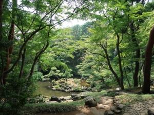 殿ヶ谷庭園を散歩してきました I visited Tonogayako garden
