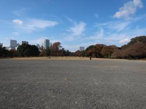 新宿御苑も随分と秋めきました。Autumn foliage in Shinjyukugyoen garden.