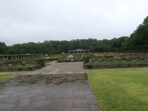 再開した神代植物公園に出かけてきました。 I visited reopned Jindai botanical garden