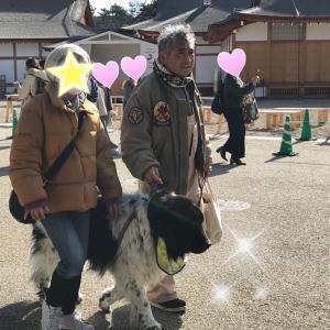 1月は愛知県 ぴちぴち女子会②