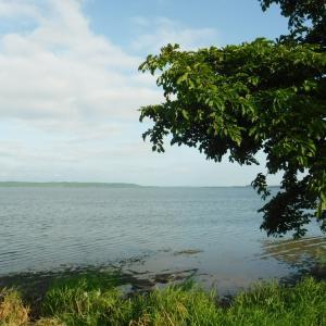 旅10日目 クッチャロ湖にて3日目の朝 今日もダラダラしよう