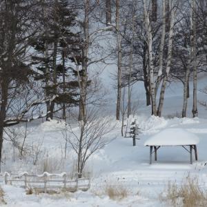 阿寒湖リゾバ64日目 ちょっと暖かい日