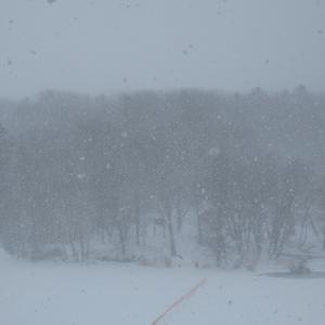 阿寒湖リゾバ76日目 雪の日