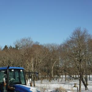 ルパンの町で牧場11日目 寒い