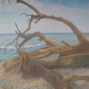 湖畔の倒木