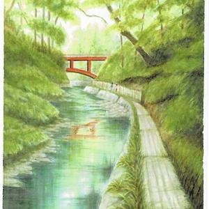 等々力渓谷・・ゴルフ橋(Ⅱ)