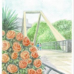 さんかく橋とバラ