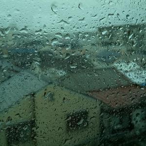 今年は早い梅雨入りです