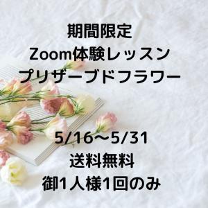 Zoom体験レッスン受講者募集してます(*^▽^*)