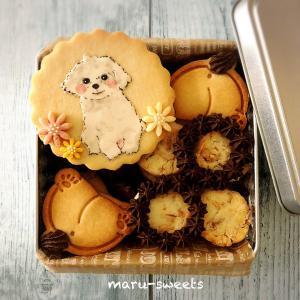 米粉クッキー缶 第4段 ワンチャン缶