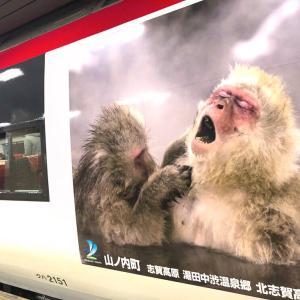本当に!猿の気持ちがよく分かる(^。^)長野温泉の旅