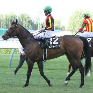 東サラ2021募集馬申込完了