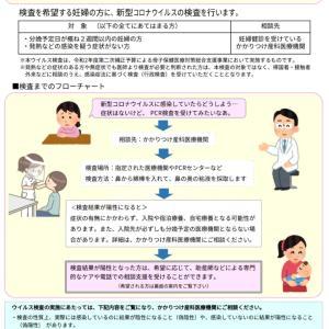 コロナウイルス流行下における妊産婦総合対策事業の説明会